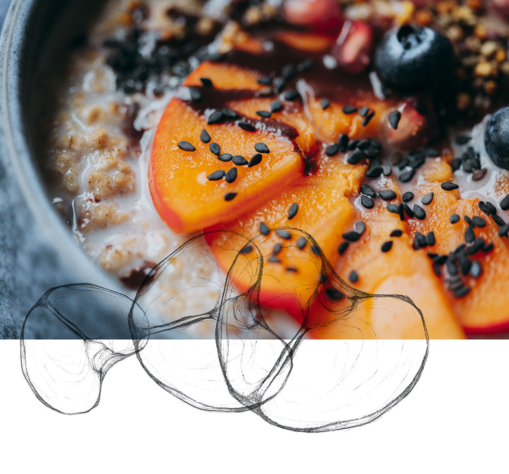 porridge-veggieboogie-mr2
