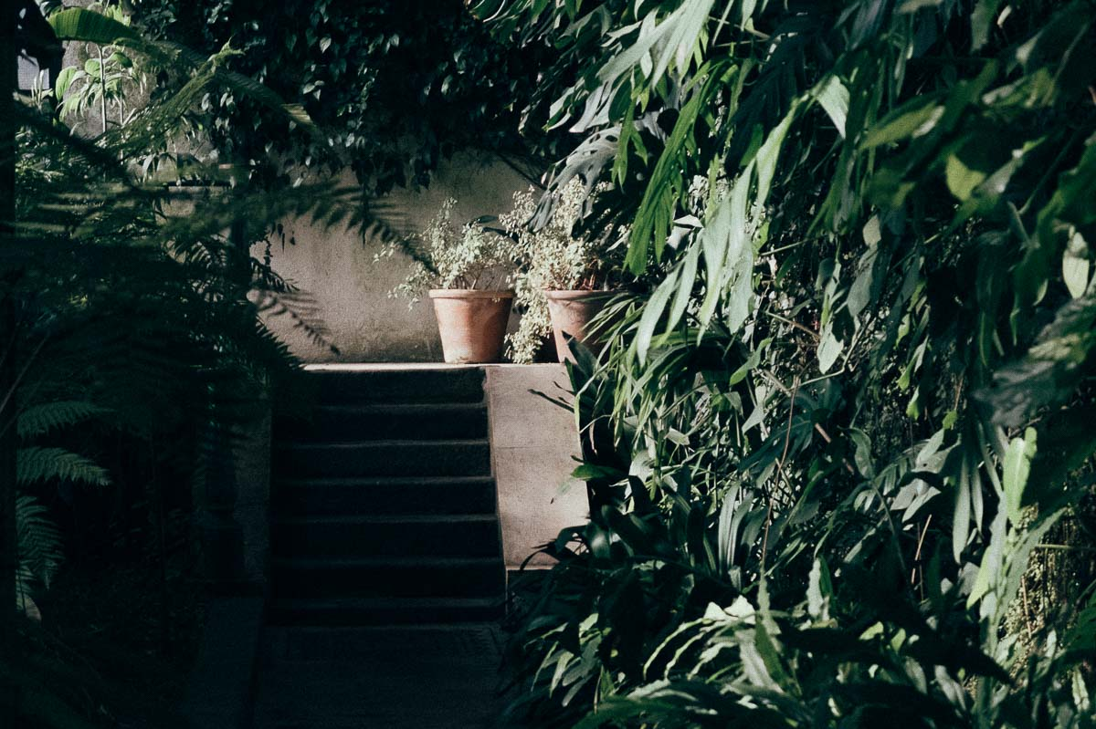 greenhouse-18
