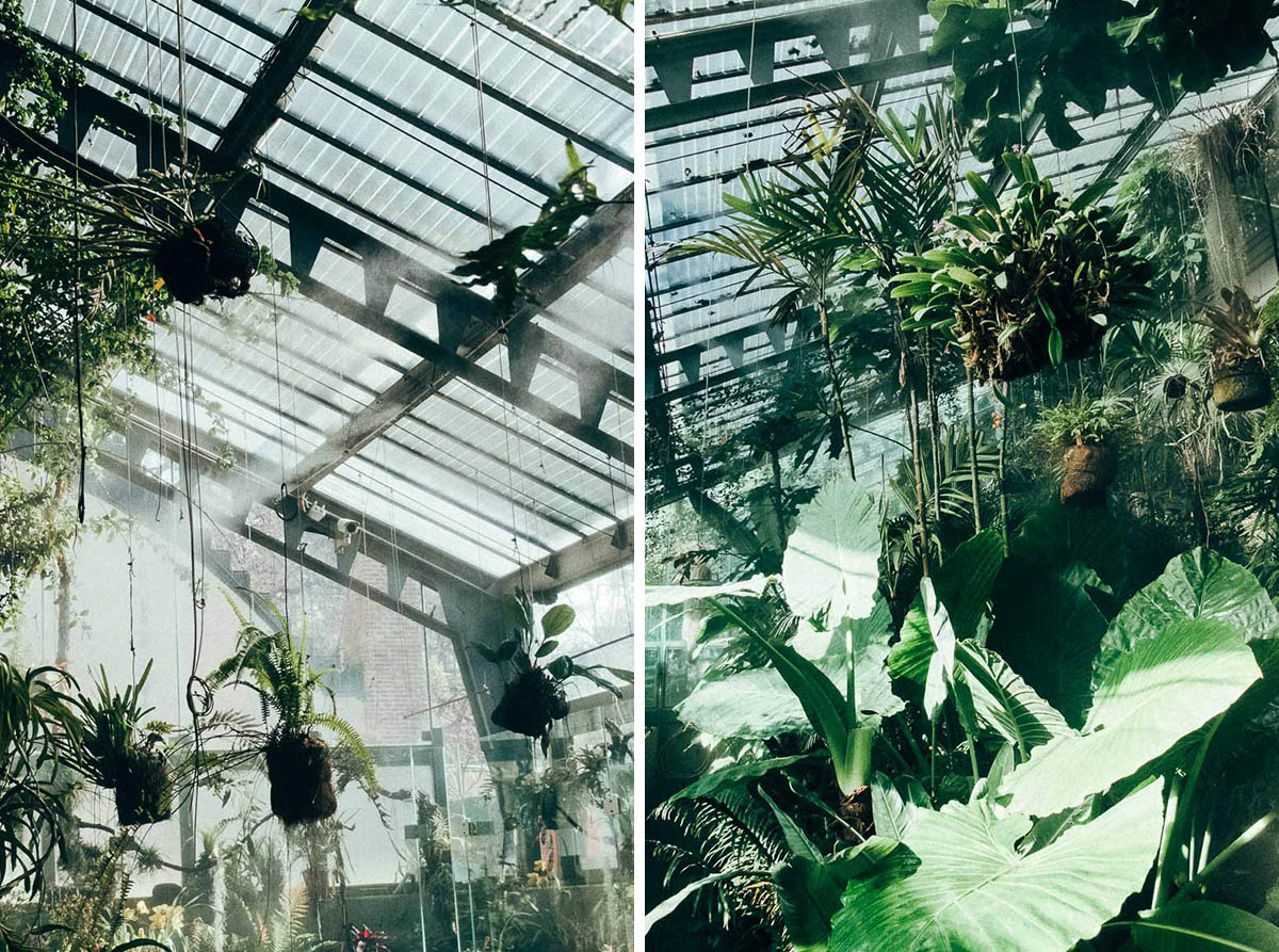 greenhouse-26